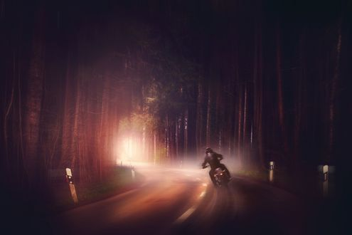 Обои Мотоциклист едет по дороге проложенной среди леса