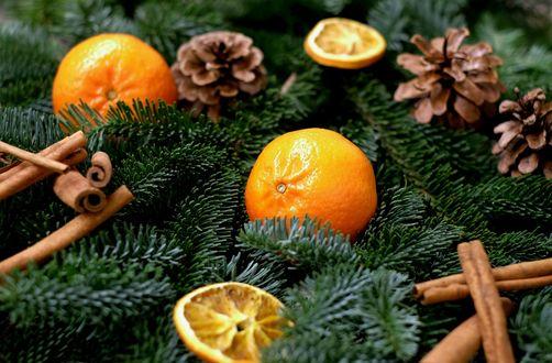 Обои Новогодние мандарины, шишки и палочки корицы на елочных веточках