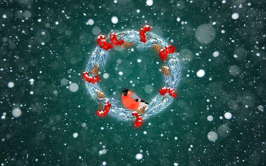 Обои Снегирь сидит в Рождественском веночке под падающим снегом