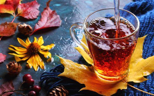 Обои Стакан чая на осеннем листе, ягоды, шишки и цветы на столе, фотограф Оксана Голева