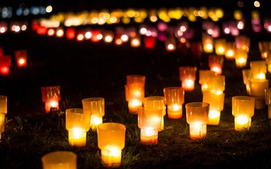 Обои Множество красно-золотых фонариков на траве в ночи