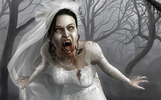 Обои Кровавая девушка-невеста вампир Мэри стоит на фоне леса