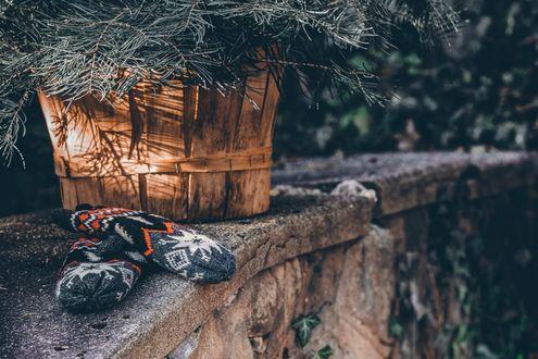 Обои Варежки лежат возле корзины с еловыми ветками