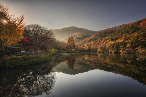 Обои Утро на берегу озера, фотограф c1113