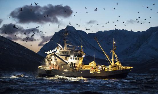Обои Рыбацкое судно на синих водах, фотограф Kurt Arrigo