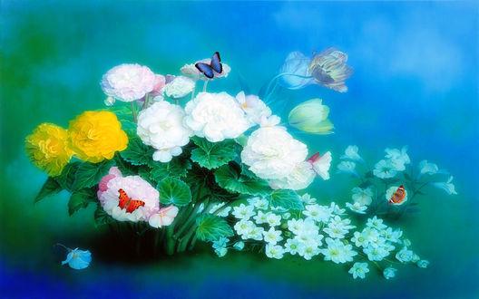 Обои Цветы и бабочки на разноцветном фоне