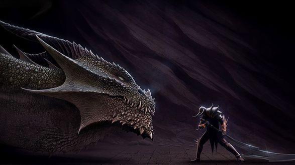 Обои Дракон смотрит на воина с мечом
