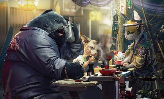 Обои Кошачий босс с приятелем едят в улочной японской закусочной, Moments of cat planet / Моменты на планете кота