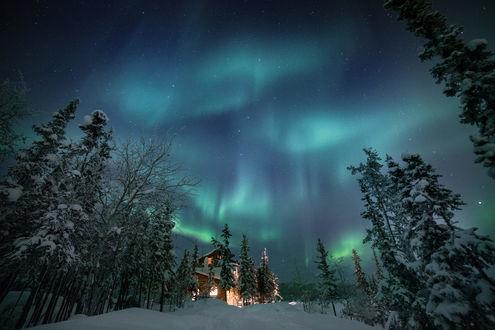 Обои Хижина в лесу под ночным звездным небом, фотограф Martina Gebarovska