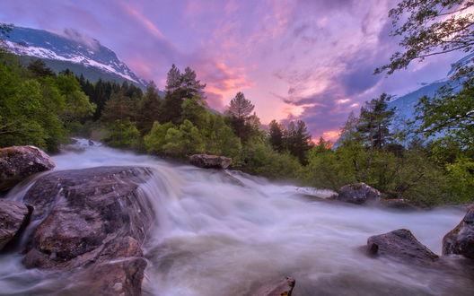 Обои Горная река в лесу
