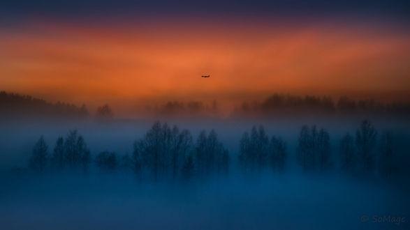 Обои Самолет над лесом в тумане, фотограф Sven Olav Vahlenkamp