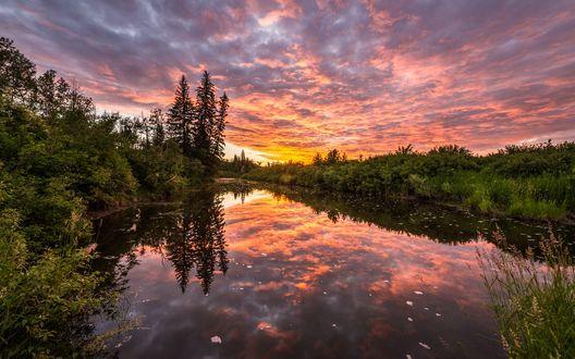 Обои Река рядом с деревьями под вечерними облаками