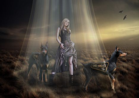 Обои Девушка и два добермана-робота стоят под лучами света на фоне сумрачной природы