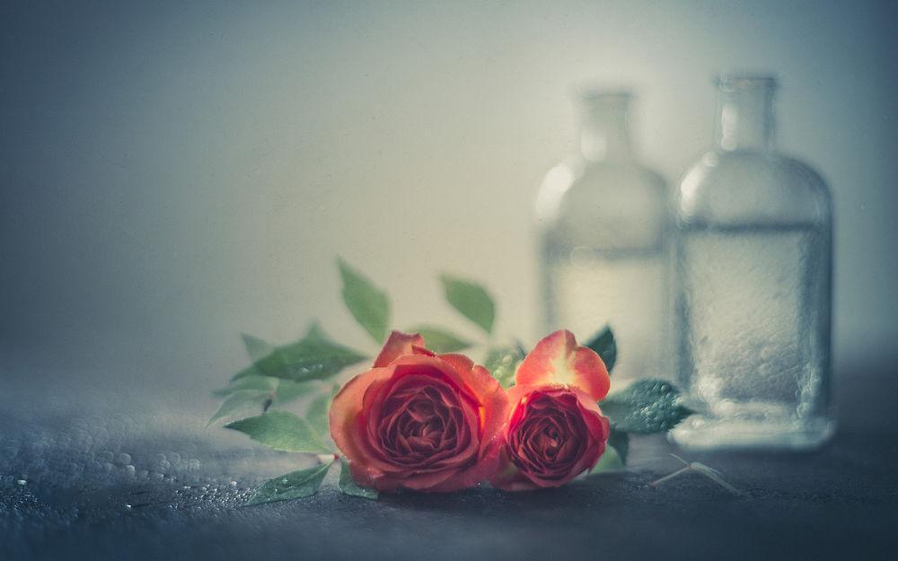 Обои для рабочего стола Розы на столе, рядом две бутылки с водой
