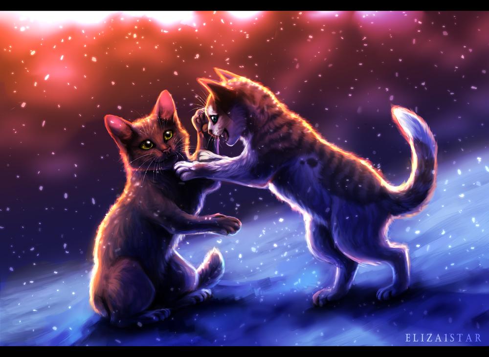 Обои для рабочего стола Котята играют на снегу, by Eliza1star