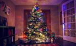 Обои Новогодняя елка с горящей гирляндой и подарки в комнате