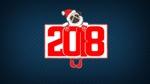 Обои Символ 2018 года, за которым собака породы мопс