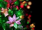 Обои Елочная ветка с новогодними украшениями на фоне боке с бликами