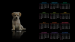 Обои Календарь на 2018 год-год собаки