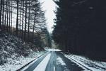 Обои Снег на дороге, по бокам которой растут деревья, фотограф Daniel Casson