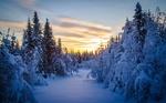 Обои Заснеженная тропа в зимний лес