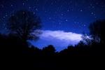 Обои Силуэты деревьев на фоне усыпанного звездами ночного неба и облака, подсвеченного луной