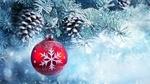 Обои Красный шарик со снежинкой на заснеженной еловой ветке