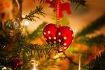 Обои Новогоднее сердечко на елке, фотограф Clo Dallas