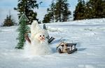 Обои Снеговик стоит у елки перед санками