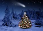Обои Наряженная новогодняя елка посреди опушки леса в снегу, в небе видна падающая комета