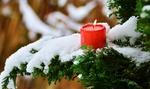 Обои Горящая свеча на заснеженной ветке дерева