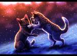 Обои Котята играют на снегу, by Eliza1star