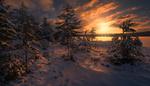 Обои Зимний солнечный день на Ringerike, Norway / Ringerike, Норвегия, фотограф Ole Henrik Skjelstad