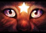 Обои Мордочка кота с сияющей звездой на лбу, by Eliza1star