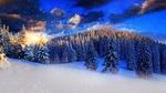 Обои Заснеженный лес на закате дня, на фоне падающего снега