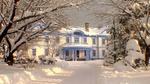 Обои Светлый особняк и деревья покрыты снегом