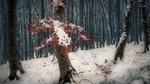 Обои Первый выпавший снег в лесу, фотограф Otto Gal