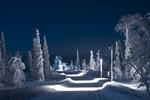 Обои Зимняя дорога ночью, освещенная фонарями