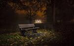 Обои Одинокая скамейка, освещенная фонарями в ночном осеннем парке
