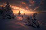 Обои Зимнее раннее утро, фотограф Ole Henrik Skjelstad