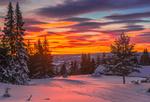 Обои Яркое облачное небо над зимней природой, фотограф Jоrn Allan Pedersen