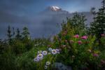 Обои Горный пейзаж с цветущей поляной и облачным небом, Doug Shearer