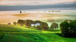Обои Утренний туман над полем