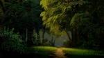 Обои Тропинка, ведущая к лесу