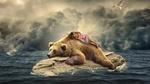 Обои Девочка спит на медведе, лежащем на камне в океане, дельфин выпрыгивает из воды и летящие чайки на фоне пасмурного неба