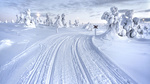 Обои Следы от колес на снегу, Лапландия / Lappland, Финляндия / Finland