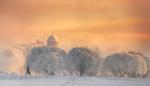 Обои Зима в Санкт-Петербург, фотограф Ed Gordeev