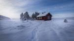 Обои Следы на снегу ведущие к дому, Рингерике, Норвегия / Ringerike, Norway, фотограф Ole Henrik Skjelstad