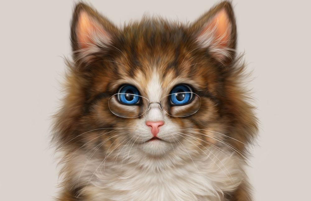 Обои для рабочего стола Голубоглазый кот в очках, by Alena Ekaterinburg