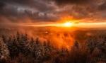 Обои Закат солнца в Северном Шварцвальде зимой в горах, покрытых заснеженными деревьями и туманом, фотограф Niko Benas